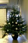 baker-tilley-christmas-tree-2014