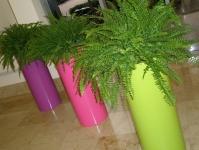 Pillar tall bright planters